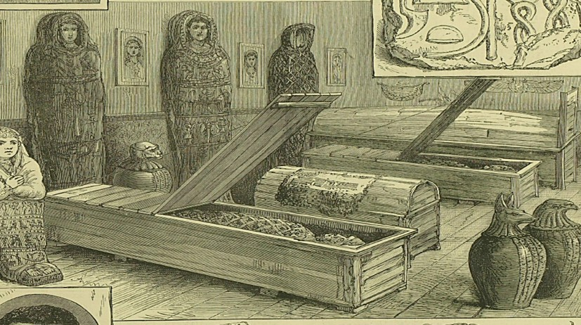 Exhibition of Hawara mummies from the Illustrated London News